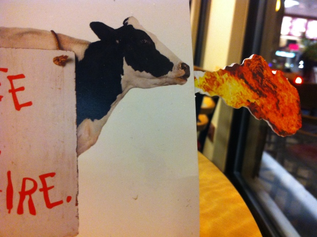 Cow Breathes Fire - funny.